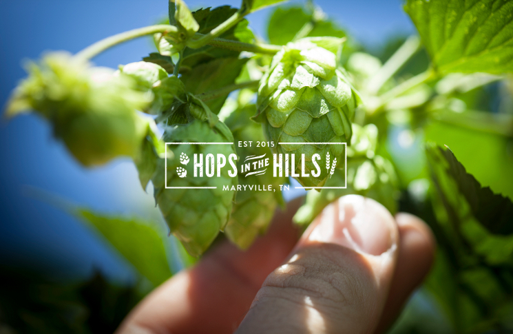 Hops In The Hills